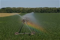 Field irrigation artificial rain plant water Stock Photo
