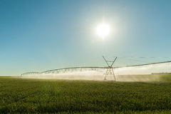 Field irrigation Royalty Free Stock Photography