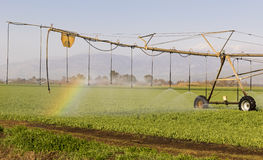 Field Irrigation. Line of sprinklers on irrigation machine irrigating a field Stock Photo