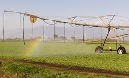Field Irrigation Stock Photo