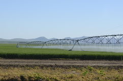 Field Irrigation system Royalty Free Stock Photography