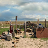 Field kitchen Kazakh shepherds Royalty Free Stock Photos