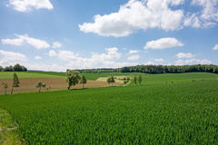 Field in the Kraichgau Stock Image