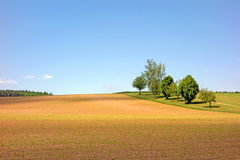 Field in the Kraichgau Stock Photography