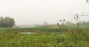 Field with lake covered with fog. 4k stock video footage