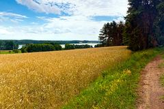 Field by lake, Poland Stock Photos