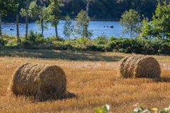 Field by a lake. A field and straw by a lake Stock Photo