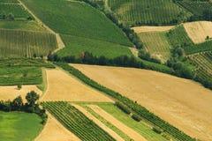 Field landscape Stock Image