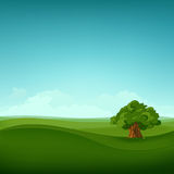 Field Landscape. Summer Field Landscape. Eniroment Background. Vector Illustration Royalty Free Stock Image