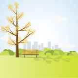 Field landscape with Big Tree and Bench. Park Scene with City Background.Vector Illustration Royalty Free Stock Photography