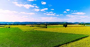Field landscape in the countryside Royalty Free Stock Image