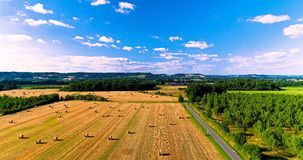 Field landscape in the countryside Royalty Free Stock Photography