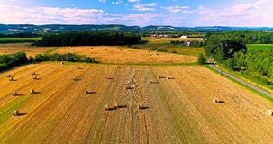 Field landscape in the countryside Stock Image