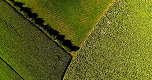 Field landscape in the countryside Stock Photo