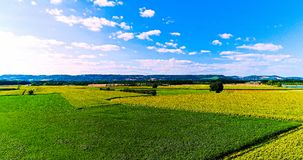 Field landscape in the countryside Stock Photography