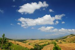 Field Landscape with fantastic clouds Stock Image