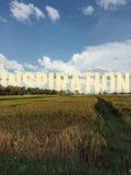 The field landscape of harvesting season Stock Photo