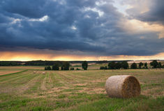 Field landscape with straw bales Royalty Free Stock Photography