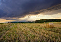 Field landscape with straw bales Royalty Free Stock Photos