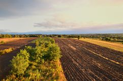 Field landscape in sunshine Royalty Free Stock Photos