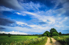 Field landscape. With village door and deep blue sky Royalty Free Stock Images