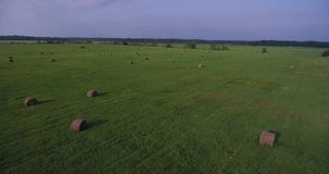Field of large hay bales, low flying aerial stock footage