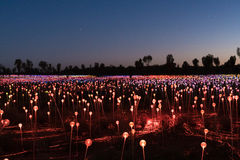 Field of Light, Uluru, Northern Territory, Australia. Yulara, Australia - October 12, 2016: Field of Light by artist Bruce Monro at Ayers Rock / Uluru, Australia stock images