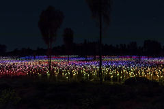 Field of Lights art installation Royalty Free Stock Photos