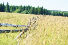 Field. Lonely fence in the wide field Stock Photography
