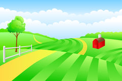 Field meadow summer landscape day road illustration. Vector Royalty Free Stock Photography