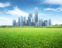 Field and modern city. Field of spring flowers and modern city Stock Image