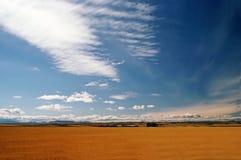 Field, Montana Royalty Free Stock Photos