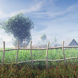 Field In The Morning. Field covered with beautiful vast plants in the mist of the morning with clouds in the blue sky and tree, house and a village with green Royalty Free Stock Photography