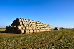 Field. Mound sheaves on winter field Stock Photo
