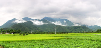 Field and mountain Stock Images