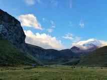 Field. Mountain field landscape nature ecuador chimborazo Royalty Free Stock Image
