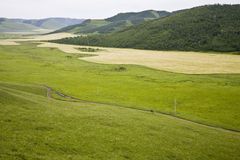 Field in the mountains Stock Photos