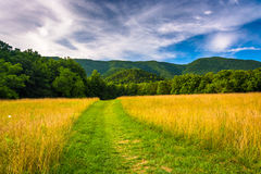 Field and mountains at Cade's Cove, Great Smoky Mountains Nation Stock Photography