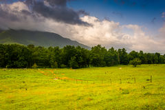 Field and mountains at Cade's Cove, Great Smoky Mountains Nation Royalty Free Stock Photo