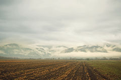 Field, mountains & clouds Royalty Free Stock Image