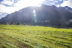 Field and Mountains. In Norway Royalty Free Stock Photo