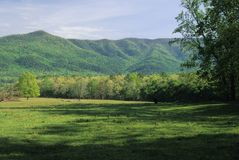 Field, Mountains, Spring. Fields, Mountains, Spring Landscape, Cades Cove, Great Smoky Mtns NP, TN royalty free stock photography