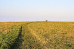 Field with a mown path and a bench on a horizon Stock Photography