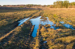 Field and mud puddle Royalty Free Stock Photos