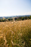 Field - Muehlviertel, Austria Royalty Free Stock Photography