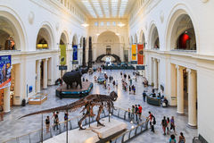 The Field Museum is located on Lake Shore Drive next to Lake Michigan, part of a scenic complex the Museum Campus,in Chicago, Illi Stock Images