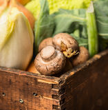 Field mushroom in rustic wooden box with vegetables Royalty Free Stock Photos