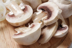 Field mushrooms stock images