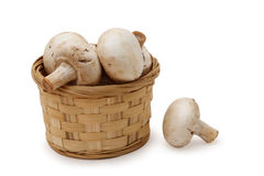 Field mushrooms in a basket. Field mushrooms in a basket, on a white background Stock Images