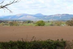 Field near bucklyrie Stock Photos